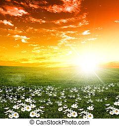 beskaffenhet landskap, och, den, solnedgång