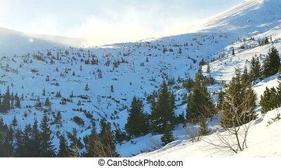 besneeuwd, bergen, winter