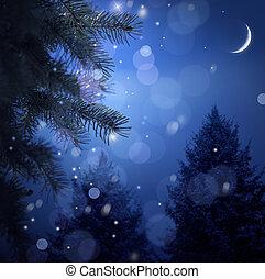 besneeuwd, bos, op, kerstmis, nacht
