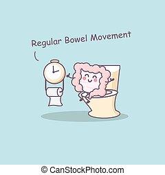 besoin, intestin, régulier, intestin, mouvement