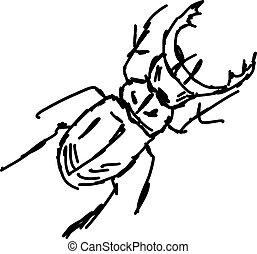 besouro, branca, esboço, experiência., vetorial, ilustração