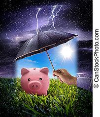 besparelserne, begreb, ensure