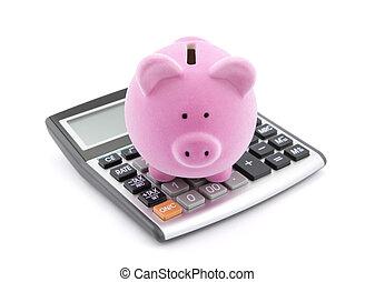 besparelserne, beregnende