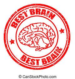 Best brain stamp