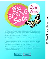 Best Choice Big Spring Sale Label Butterfly Vector