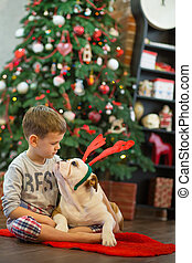 Best friends handsome blond boy and puppy red white english bulldog enjoying spending time with each other close to Christmas tree on red carpet mat. Dog wearing deer cornuted