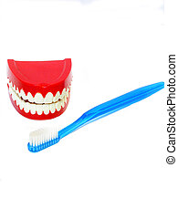 Best friends - , teeth and a toothbrush,over white,good...