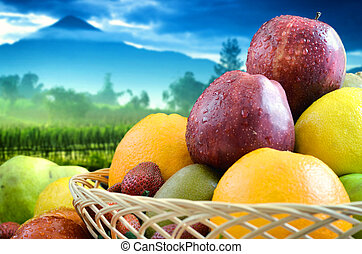 Best Fruit & Vegetables Pictures