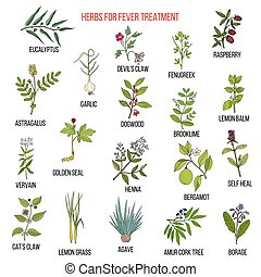Best herbal remedies for fever