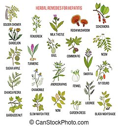 Best herbal remedies for hepatitis