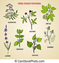 Best herbal remedies for insomnia