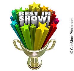 Best in Show Trophy Award Top Performer Winner Prize