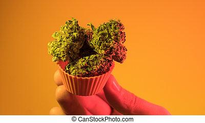Best Marijuana Strains buds. Purple Haze , Indica, Sativa, ...