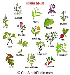 Best medicinal herbs for eyes care