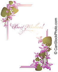 Best Wishes postcard with bunch of wild violet over white...