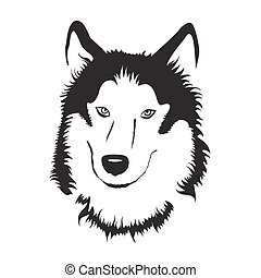 bestand, vektor, husky., illustration., sibirisch