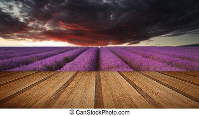 betäuben, blaßlila feld, landschaftsbild, sommer, sonnenuntergang, unter, launisch, rotes