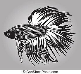 Beta fish. - Beta fish in black silhouette.