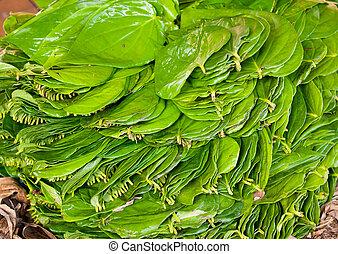Betel Leaves - Leaves of Betel (Piper Betle) at market