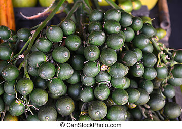 Betel palm nut fruit