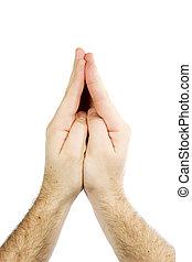 beten, freigestellt, hände