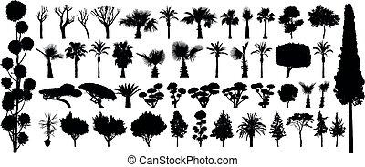 betriebe, büsche, satz, silhouette, vector., baum, freigestellt, schwarzwald, hintergrund, weißes