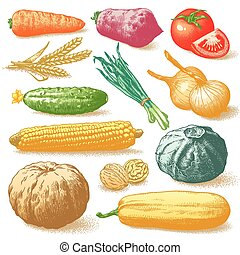 betriebe, gemuese, vektor, früchte