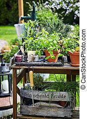 betriebe, kleingarten, hölzern, rustic, tisch, eingetopft hat