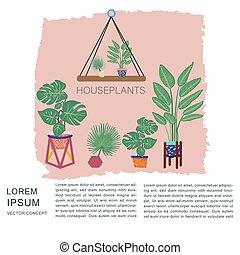 betriebe, tropische , raum, text., töpfe, merkzettel, houseplants, hintergrund., textured