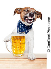 betrunken, hund, mit, bier