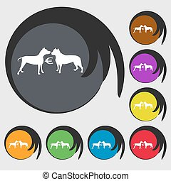 Betting on dog fighting icon. Symbols on eight colored buttons. Vector