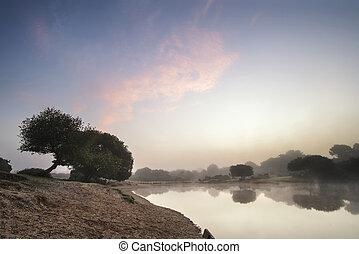 Beuatiful dawn sunrise landscape over misty lake in Summer
