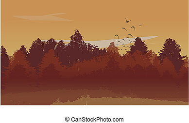 Beutiful Autumn Landscape Background with Autumn Colored Pine Tree Forest and Ascending Birds. Vector Illustration.