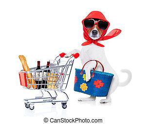 bevásárlás, kutya, díva