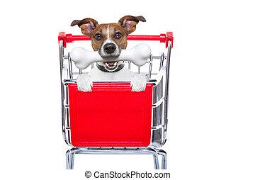 bevásárlás, kutya, kordé