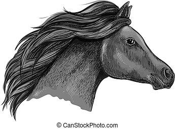 bevallig, paarde, black , verticaal