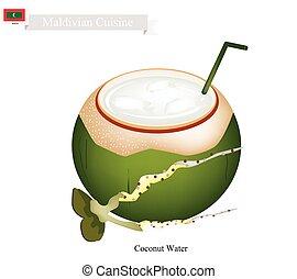 bevanda, noce di cocco, maldive, acqua, famoso, bevanda