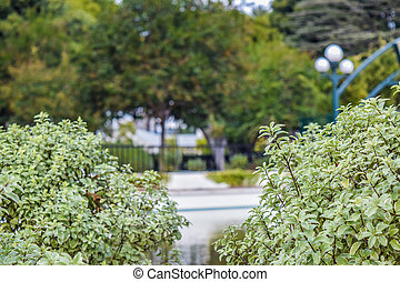 Beverly Hills Gardens Park sign in