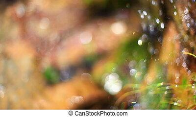 bewässern fallen, hintergrund., abstrakt