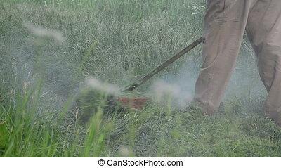 bewässern tropfen, schnitt, gras, nasse