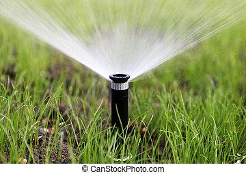 bewässerung, automatisch, sprinkler