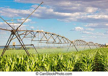 bewässerung, drehpunkt