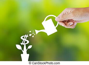 bewässerung, papier, pflanze, von, geld