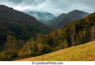 bewaldet, berge, herbst