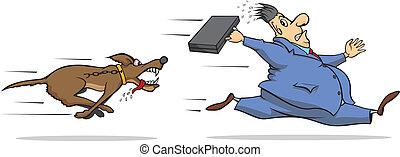 beware, cão