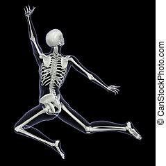 bewegung, frau, skelett, -, springen