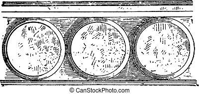 Bezant, vintage engraving.