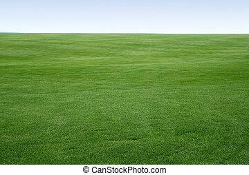 bezkoncovkový, trávník
