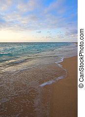 bezvětrný, oceán, během, obrazný, východ slunce
