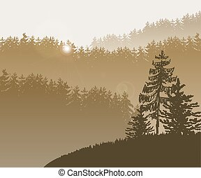 bg, foresta, albero